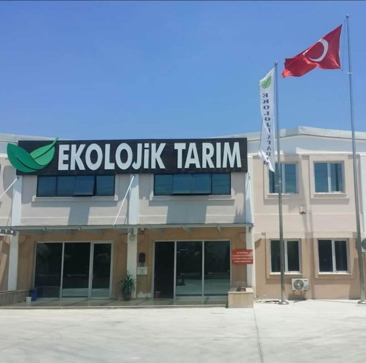 Tamer Şenoğlu